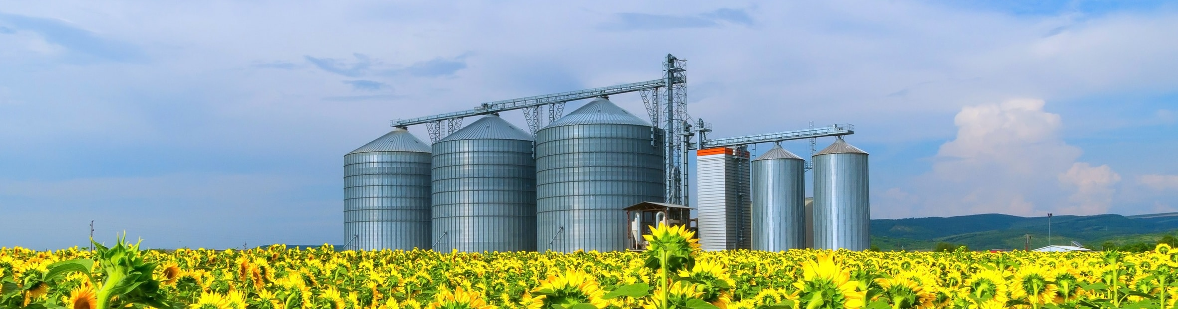 site industriel agroalimentaire